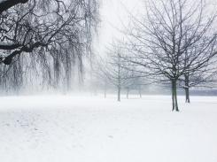 snow_day_2_516010